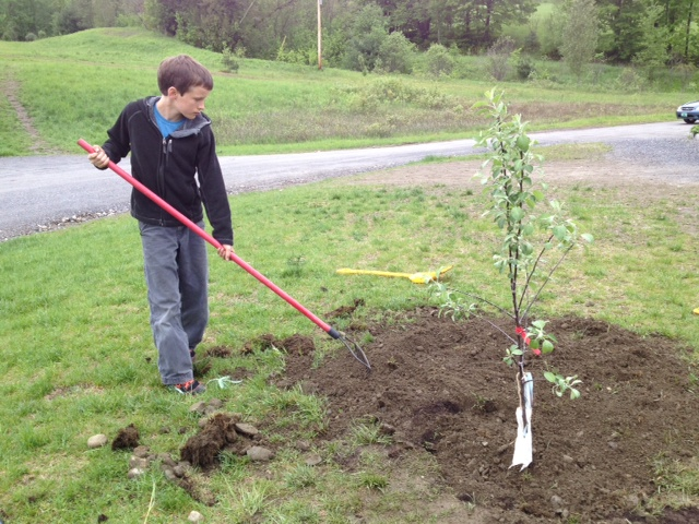 Wellspring Waldorf April Planting